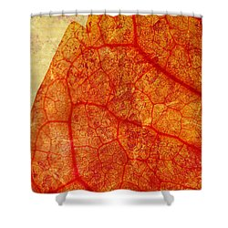 Silent Poetry Shower Curtain by Brett Pfister