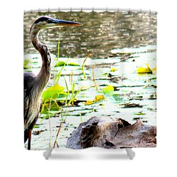 Shower Curtain featuring the photograph Silent Solitude by Kathy  White