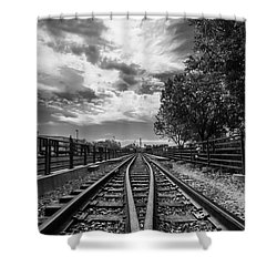 Silent Spur Shower Curtain