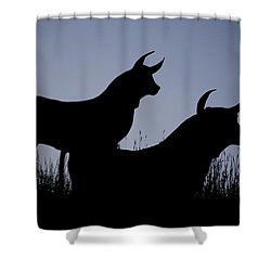 Silhouette Shower Curtain by Lisa Plymell