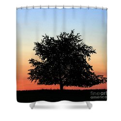 Make People Happy  Square Photograph Of Tree Silhouette Against A Colorful Summer Sky Shower Curtain