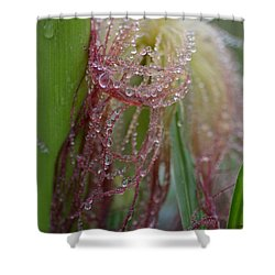 Silk And Pearls Shower Curtain by Susan Capuano