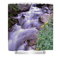 Shower Curtain featuring the photograph Silky Stream by Zawhaus Photography