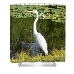 Silver Heron Shower Curtain by Sonali Gangane