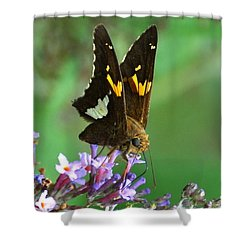 Silver Skipper Shower Curtain