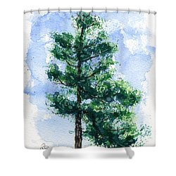 simple pine tree shower curtain by john d benson
