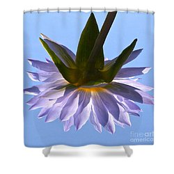 Simple Reflection Shower Curtain