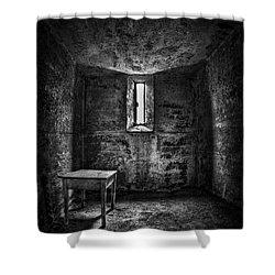 Sinner's Tale Shower Curtain by Evelina Kremsdorf