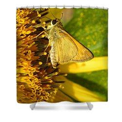 Skipper And Sunflower Shower Curtain by Sandi OReilly