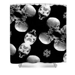 Skull Scope 8 Shower Curtain by Adam Vance