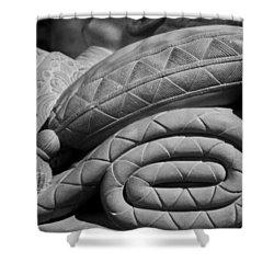 Sleep Eternal Shower Curtain by Lisa Knechtel