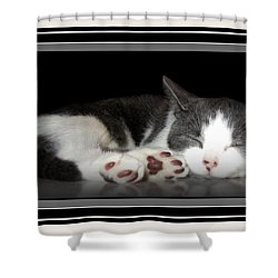 Shower Curtain featuring the photograph Sleeping Beauty by Danielle  Parent