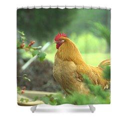 Slick 2 Shower Curtain