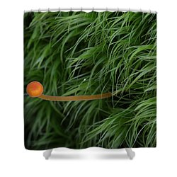 Small Orange Mushroom In Moss Shower Curtain