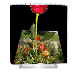 Smell Me Shower Curtain by Mariola Bitner