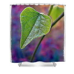 Smilax Shower Curtain by Judi Bagwell