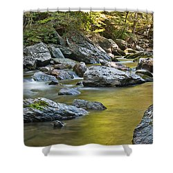 Smoky Mountain Streams II Shower Curtain