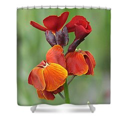Shower Curtain featuring the photograph Smooth And Silky by Chris Anderson
