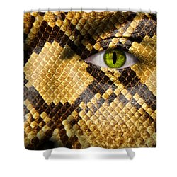 Snake Eye Shower Curtain by Semmick Photo