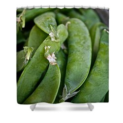 Snap Peas Please Shower Curtain by Susan Herber