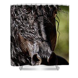Snorting Good Looks Shower Curtain by Wes and Dotty Weber