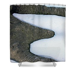 Snow Abstract Shower Curtain by Lisa Phillips