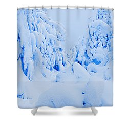 Snow-covered To Vallee Des Fantomes Shower Curtain by Yves Marcoux