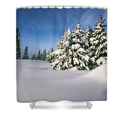 Snow Covered Trees In The Oregon Shower Curtain by Natural Selection Craig Tuttle