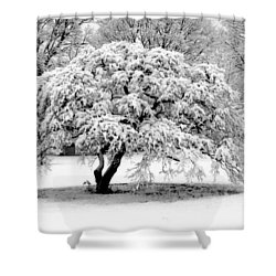 Snow In Connecticut Shower Curtain by John Scates