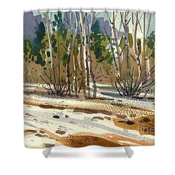 Shower Curtain featuring the painting Snow Melt by Donald Maier