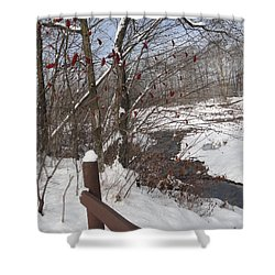 Snow Stream Shower Curtain by Meandering Photography
