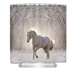 Snow White Shower Curtain by Bill Stephens