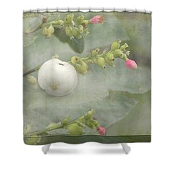 Snowberry Tales Shower Curtain by Steppeland -