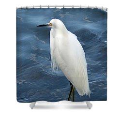 Snowy Egret 1 Shower Curtain