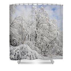 Snowy Landscape Shower Curtain by Len Rue Jr and Photo Researchers
