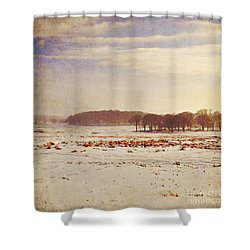 Snowy Landscape Shower Curtain by Lyn Randle