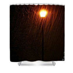 Snowy Night Shower Curtain by Susan Herber