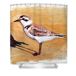 Shower Curtain featuring the painting Snowy Plover by Chriss Pagani