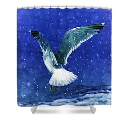 Snowy Seagull Shower Curtain by Debra  Miller