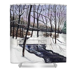 Snowy Shawnee Stream Shower Curtain