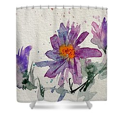 Soft Asters Shower Curtain by Beverley Harper Tinsley