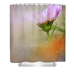 Soft Pastels Shower Curtain by Darren Fisher