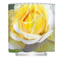 Softly Blooming Rose Shower Curtain by AE Hansen