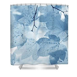 Softness Of Blue Leaves Shower Curtain by Jennie Marie Schell