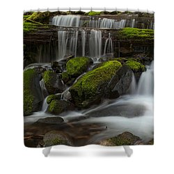 Sol Duc Stream Shower Curtain by Mike Reid