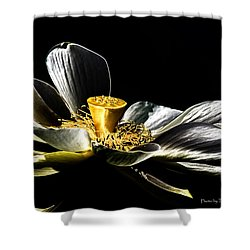 Shower Curtain featuring the photograph Solarized Lotus A by Travis Burgess