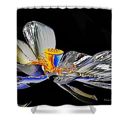 Shower Curtain featuring the photograph Solarized Lotus B by Travis Burgess