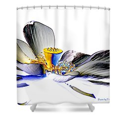 Shower Curtain featuring the photograph Solarized Lotus C by Travis Burgess
