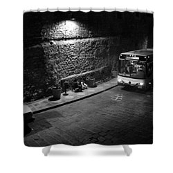 Solitary Wait Shower Curtain by Lynn Palmer
