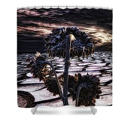 Solitude Shower Curtain by Mo T